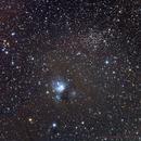 NGC 7129 & NGC 7142 in Cepheus,                                Roberto Marinoni