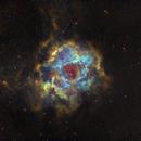 Rosette nebula in Hubble palette,                                Janos Barabas