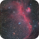 IC2177,                                Ken-ichiro Tanaka