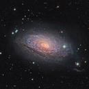 M63 Sunflower Galaxy in Canis Venatici,                                Mark Wetzel