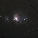 M42, Nébuleuse d'Orion,                                Alex