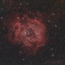 Rosette Nebula #3,                                Hockeyscope