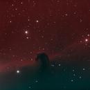 The Horsehead Nebula, Barnard 33,                                Randy Flynn