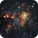 Tarantula Nebula,                                varshnei