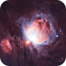 M42, Narrowband, Imaged by DavidNG,                                Stacy Spear