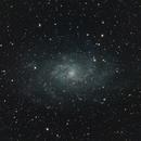 M33. The Triangulum Galaxy,                                Gary Crawford