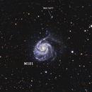 M101 Pinwheel Galaxy,                                Ali Alhawas