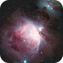 M42 The Great Nebula in Orion,                                Wes Higgins