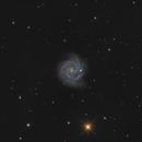 NGC3184 LRGB,                                PVO