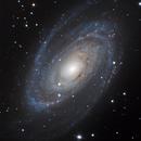 Messier 81 Bode's Galaxy,                                Simon Großlercher