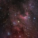 Cave Nebula,                                Samuel