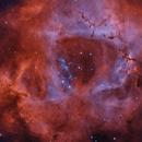 Rosette Nebula HaOIIIRGB,                                Robert Schumann