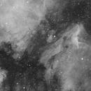 IC5070 in H-Alpha,                                Christian Dahm