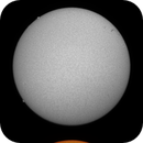 Sol 29-5-2020 Ha & Cak,                                Steve Ibbotson