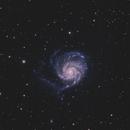 M101,                                dheilman