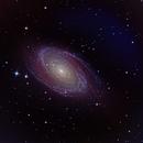 M81 Just 2 Hours of Data,                                Ross Salinger