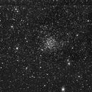 Caroline's Rose Cluster NGC7789,                                Vikas Sahota