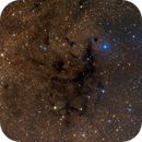 LDN673 - dark tendrils in Aquila (reprocessed),                                Rick Stevenson