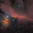 Horsehead Nebula (Barnard 33) and Flame Nebula (NGC2024) with Mono and OSC images.,                                Topographic