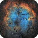 IC 1396-nébuleuse de la trompe d'éléphant SHO,                                astromat89