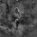 IC 1396,                                angelo mazzotti