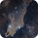 """The Dive"" - LDN 1235 - The Dark Shark Nebula in Cepheus,                                Min Xie"