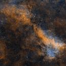 LBN 251 in Cygnus,                                Alex Roberts