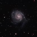 M101,                                PederP