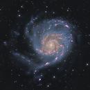 M101,                                Thomas Kings