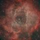 Rosette Nebula,                                Robin Clark - EAA...