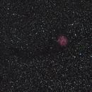 Cocoon Nebula,                                Mike Millan