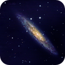NGC 253,                                leandro