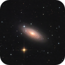 NGC2841,                                Gabe Shaughnessy