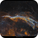 NGC 6960, the Witch's Broom Nebula,                                Metsavainio