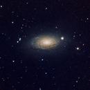 M63 the Sunflower galaxy,                                John Favalessa