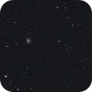 M100 Galaxy and Friends,                                Vlaams59
