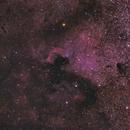 NGC 7000,                                Filippo Verlezza