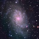Galassia del Triangolo,                                StefanoBertacco
