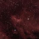 IC 5070 Pelican Nebula,                                Eric COUSTAL ( F5ODA )