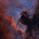 Great Cygnus Wall,                                DeepSkyView
