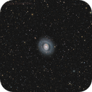M 94,                                Mike Miller