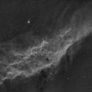 California Nebula in Ha,                                Fabian Rodriguez Frustaglia