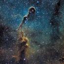 IC 1396 - Elephant Trunk,                                barrabclaw