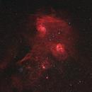 Flaming Star Nebula Region,                                AstroAdventure_92