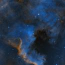 NGC 7000,                                Franco Silvestrini
