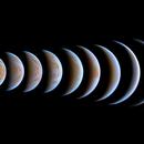 Venus Trilobite,                                Łukasz Sujka