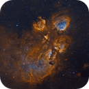 Cat's Paw Nebula, 2020,                                S. Stirling