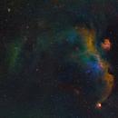 IC2177 Seagull Nebula - Hubble-Palette - two panel mosaic,                                equinoxx