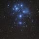 Pleiades cluster and PanSTARRS c/2015 ER61,                                Gianni Cerrato
