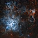 NGC2070 - Tarantula Nebula, 2020,                                George Varouhakis